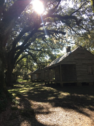 22 Slave Cabins down the road of Live Oaks
